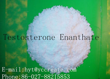 China Rohes Steroid CASs 315-37-7 pulverisiert Probe Testosteron Enanthate Primoteston Depot-99% fournisseur
